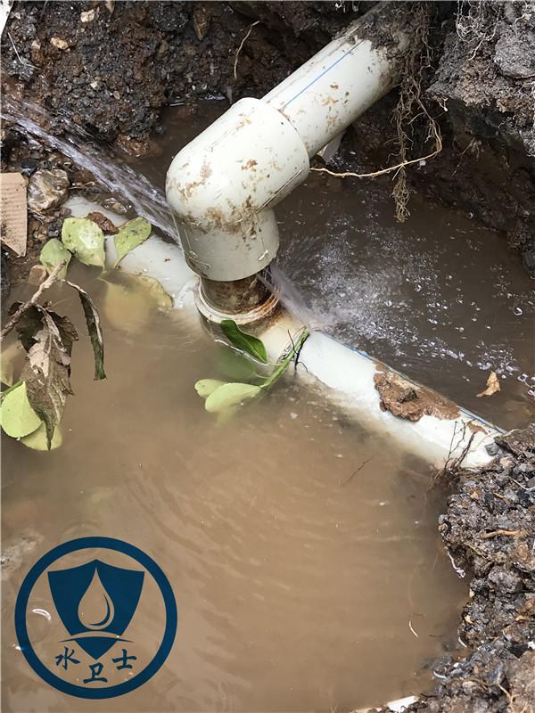 自来水管测漏案例
